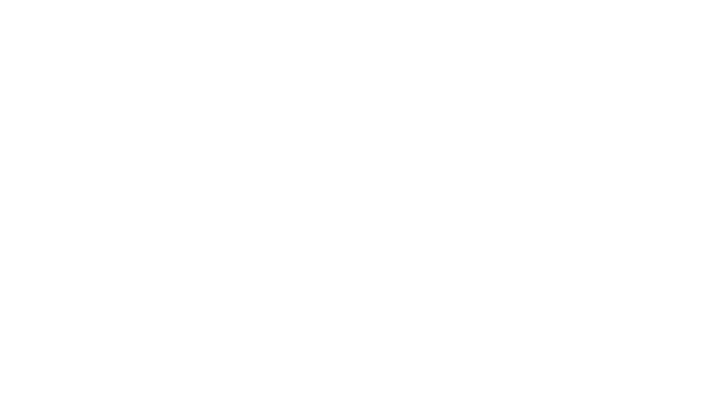 BullWS