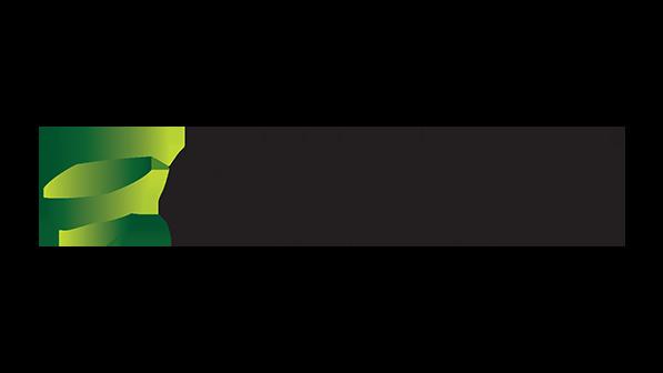 Greenstorm logo